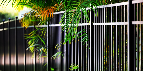 Aluminum fence with palm leaves